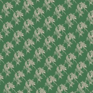 oiseaux sur fond vert