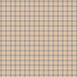 burberry (petit)